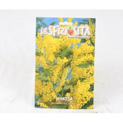 Mimosa Seeds
