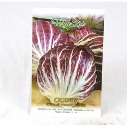 Early Red Chicory Ball Seeds