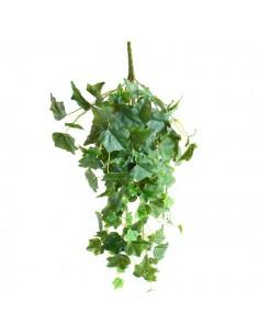 Edera Hibernica Plant Vase 7cm