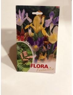 Bulbi di Iris (15 bulbi)