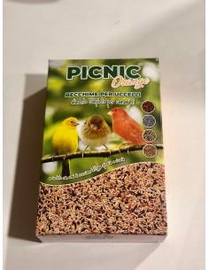 copy of Erica Arborea Seeds