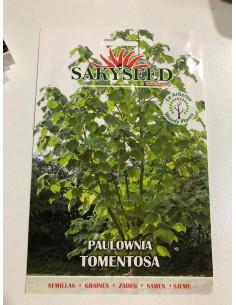 Semi di Paulownia tomentosa
