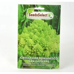 Semi Cavolo Broccolo Romanesco