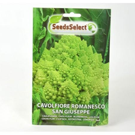 Semi Pianta Cavolo Broccolo Romanesco