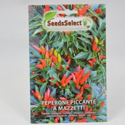 Chilli Pepper in bunches Seeds