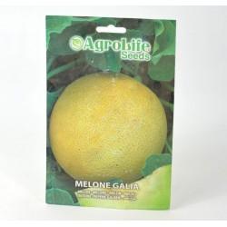 Semi Melone Galia