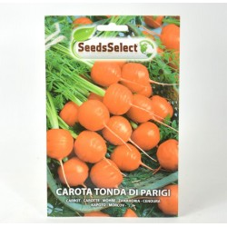 Round Carrot of Paris Seeds