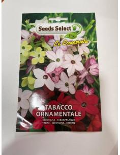 Semi di Tabacco Ornamentale...
