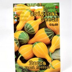 Bicolor Pumpkin Seeds