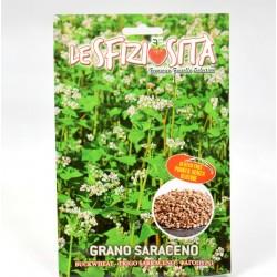 Buckwheat Plant Seeds