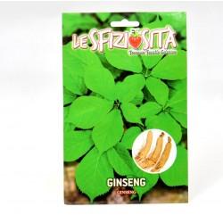 Semi Pianta del Ginseng