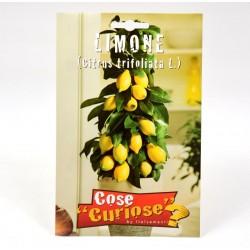 Semi Limone