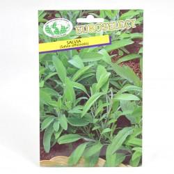 Semi Salvia