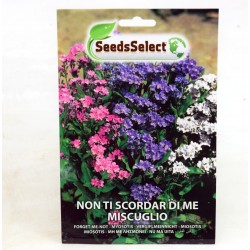 Not Forget Me Seeds