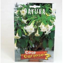 Datura Plant Seeds