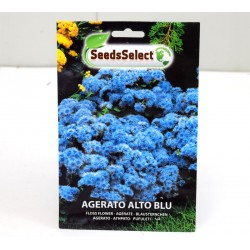 Blue Dwarf Agerato Seeds