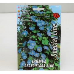 Ipomea Seeds