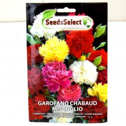 Red Chabaud Carnation Seeds